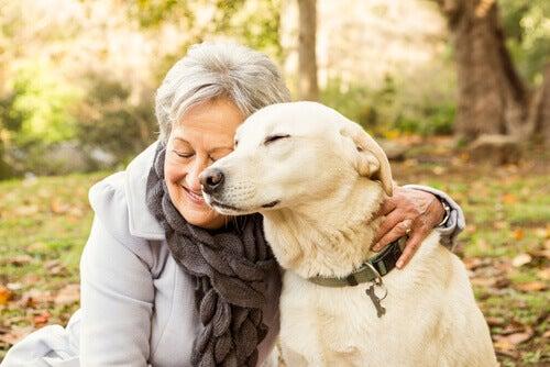 animais para idosos
