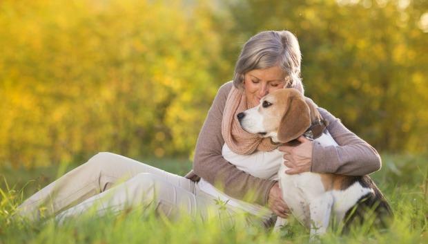 Animais ajudam idosos com depressão